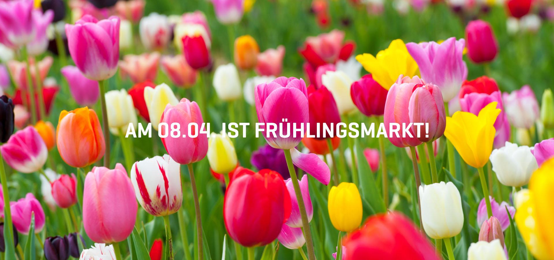 fruehlingsmarkt18